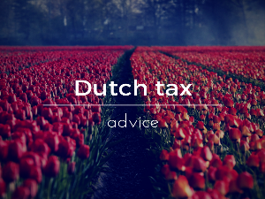 Dutch tax advice