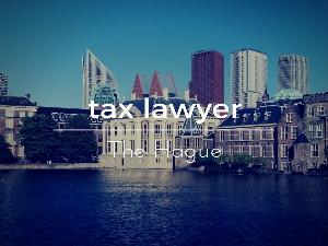 Tax lawyer The Hague
